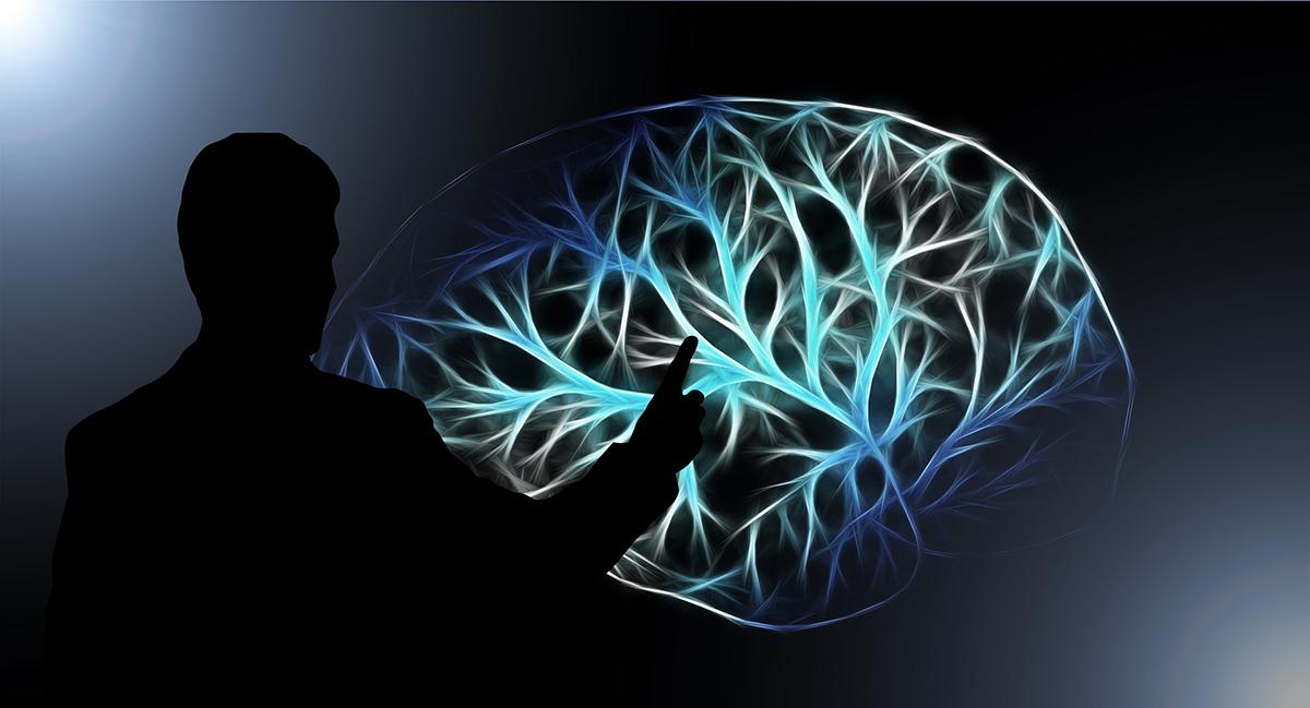 Neuropsicología clínica aplicada